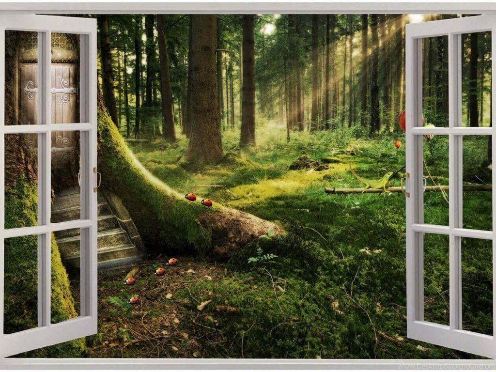 Картинки окно в природу