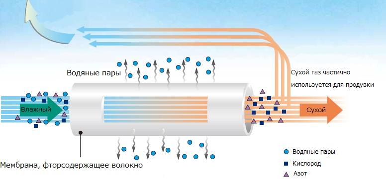 Схематическое изображение принципа действия осушителя мембранного типа